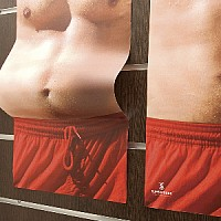 The Fat Poster